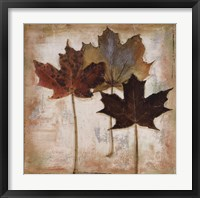 Natural Leaves III Framed Print
