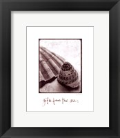 Gifts from the Sea Framed Print