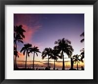 Framed Silhouette of palm trees on the beach, Waikiki Beach, Honolulu, Oahu, Hawaii, USA