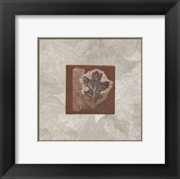 Oak Leaf Framed Print
