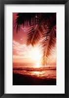Framed Hawaii USA