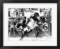 Framed Side profile of a cowboy riding a bull at a rodeo
