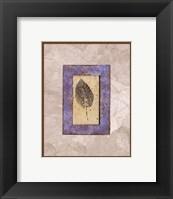Framed Ash in Lavender