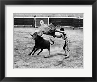 Framed Matador fighting with a bull