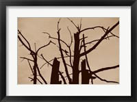 Perched and Sat and Nothing More II Framed Print