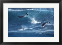 Framed Dolphins Catching A Wave