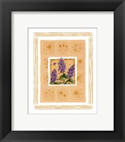 Framed Lilacs