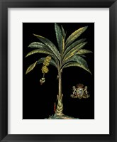 Palm & Crest on Black I Framed Print