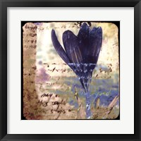 Blooming Purple I Framed Print