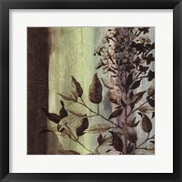 Framed Painted Botanical IV