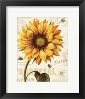 Under the Sun I Framed Print