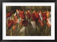 Framed Tipsy Tulips