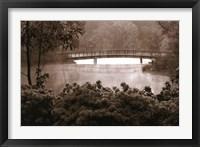 Framed Callaway Garden Azaleas
