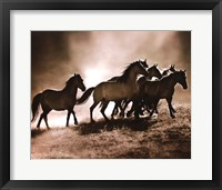 Framed Wild Horses