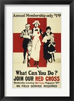 Framed Join Our Red Cross Annual Membership