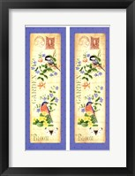 Blooming Garden V Framed Print