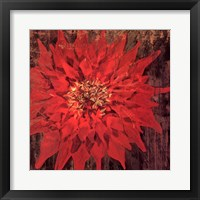 Floral Frenzy Red IV - square Framed Print