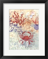 Floral Frenzy Coastal IV Framed Print