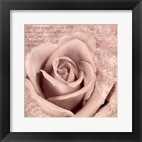 Framed Vintage Rose II