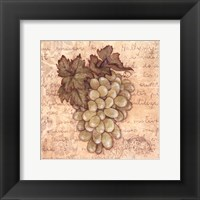 Grapes IV Framed Print
