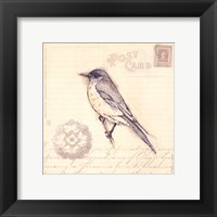 Framed Bird I