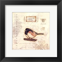 Color Bird II Framed Print