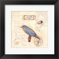 Color Bird III Framed Print