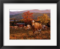 Framed Autumn's Gold