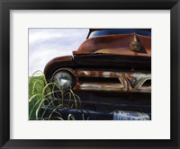 Framed Out to Pasture