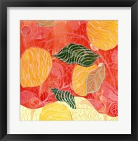 Framed Citrus Limon II