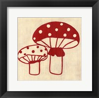 Framed Best Friends- Mushrooms