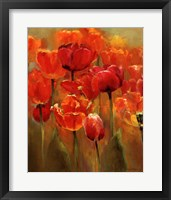 Framed Tulips in the Midst I