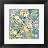 Spring Renewal III Framed Print
