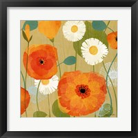 Framed Daisies and Poppies I