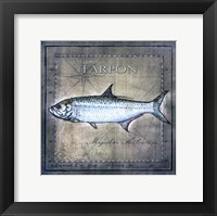 Framed Ocean Fish X