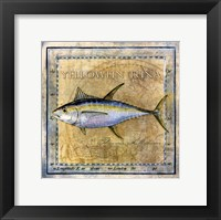 Framed Ocean Fish XII