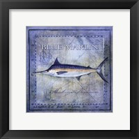 Framed Ocean Fish V