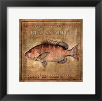 Framed Ocean Fish VII