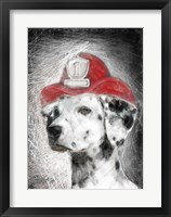 Framed Firefighter Dalmation