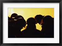 Rear view of a group of firefighters looking down Framed Print