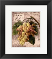 Framed Fresco Fruit II