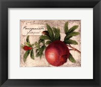 Framed Fresco Fruit V