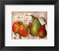 Fresco Fruit X Framed Print