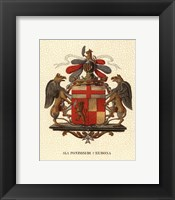 Framed Stately Heraldry III