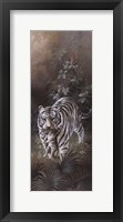 Framed White Tigers