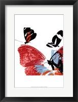 Framed Butterflies Dance IX