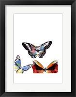Framed Butterflies Dance II