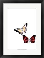 Framed Butterflies Dance V