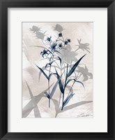 Indigo Bloom IV Framed Print