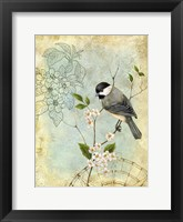 Songbird Sketchbook II Framed Print